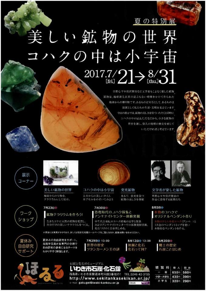 夏の特別展 美しい鉱物の世界 コハクの中は小宇宙